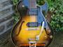 Gibson-ES-225TD-9